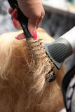 Hairdresser Royalty Free Stock Photos