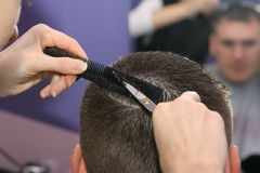 Hairdresser. Cutting hair Royalty Free Stock Photo