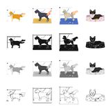 Hairdresser, animals, dog, and other web icon in cartoon style. Puppy, hygiene, hound, icons in set collection. Stock Image