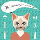 Hairdresser for animals stock illustration