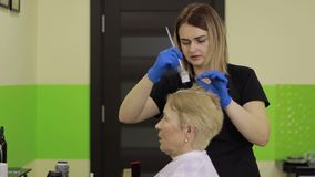 Hairdresser applying color to female customer stock video footage