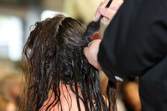 Hairdresser applying hair dye by brush Royalty Free Stock Images