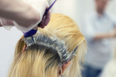 A hairdresser bleaching hair for a blonde female Royalty Free Stock Image