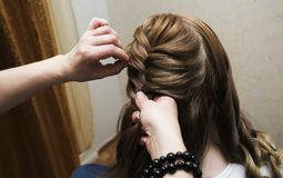 Hairdresser braiding clients hair. Professional hairdresser braiding clients hair Stock Photo