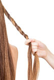 Hairdresser braids for long hair tourniquet isolated on  white background. Royalty Free Stock Image