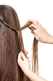 Hairdresser braids long straight brown hair isolated on white. Stock Image