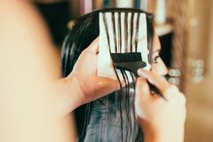 Hairdresser coloring hair in studio Stock Images