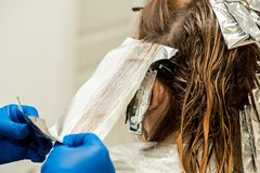 Hairdresser coloring hair in studio. highlighting or coloring of red hair.  royalty free stock photos