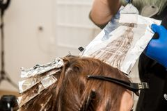 Hairdresser coloring hair in studio. highlighting or coloring of red hair.  royalty free stock photo