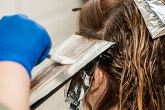 Hairdresser coloring hair in studio. highlighting or coloring of red hair.  stock photos