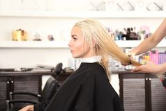 Hairdresser combing blonde`s hair. At salon Stock Images