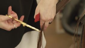 Hairdresser combing and cutting woman hair with hairdressing scissors in beauty studio. Close up haircutter making stock video