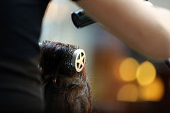 Hairdresser combing hair by hairbrush and hair dryer Stock Image