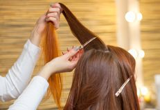 Hairdresser combing her long, red hair of his client in the beauty salon. Professional hair care and creating hairstyles royalty free stock images