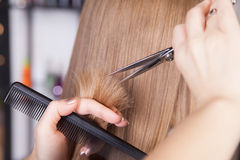 Hairdresser cut blond hair of a woman Royalty Free Stock Photos