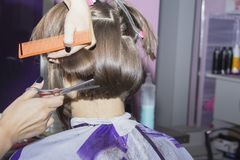 Hairdresser cut brown hair in the hands of the scissors and comb Foto de archivo