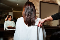 Hairdresser cut long ends to yuong woman. Royalty Free Stock Image