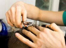 Hairdresser cuts hair with scissors on crown of Royalty Free Stock Images