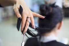Free Hairdresser Cutting Client`s Hair In Beauty Salon. Beauty Concept Stock Image - 139251361