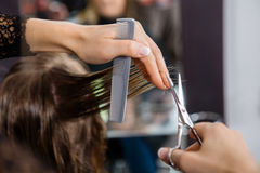 Hairdresser Cutting Customer's Hair In Salon Royalty Free Stock Photo