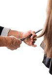 Hairdresser cutting the hair Stock Photography