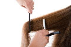 Hairdresser cutting the hair Stock Photo