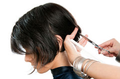 Hairdresser Cutting Hair Stock Photography