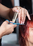 Hairdresser cutting hair Stock Photos
