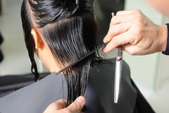 Hairdresser cutting the hair Royalty Free Stock Images
