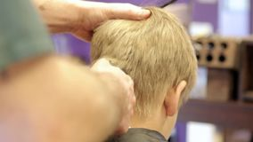 Hairdresser cutting hair by electric trimmer stock video footage