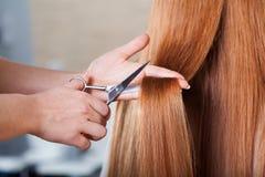 Hairdresser cutting hair Royalty Free Stock Photos