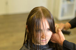 Hairdresser cutting a the hair of a young woman Royalty Free Stock Images