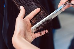 Hairdresser cutting and styling hair of woman in her shop royalty free stock image