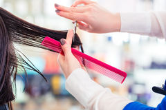 Hairdresser cutting woman hair in shop. Female coiffeur cutting women hair in hairdresser shop stock image