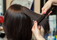 The hairdresser does aligns the hair with hair iron to a young girl, brunette in a beauty salon. stock photo