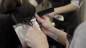 Hairdresser does hair coloring in beauty studio, woman changes her look, professional coloring and hair care stock video footage