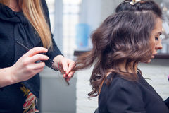 The hairdresser does a hair. The hairdresser does hair dressing Stock Images