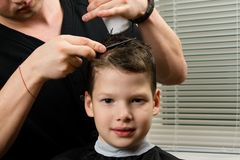 Hairdresser does a haircut for the boy and applies a remedy for easy combing royalty free stock image