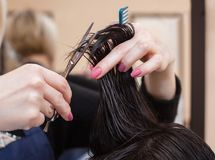The hairdresser does a haircut with hot scissors of hair to a young girl, a brunette. In a beauty salon Royalty Free Stock Image