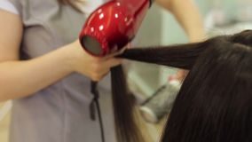 The hairdresser dries the girls wet hair with a hair dryer and combs the comb. Close-up of the process of hair styling in a beauty salon with a hair dryer and a