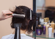 The hairdresser dries her hair a brunette girl stock photos