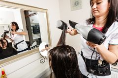 Hairdresser drying dark female hair using professional hairdryer Royalty Free Stock Images