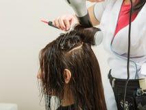 Hairdresser drying dark female hair using professional hairdryer Royalty Free Stock Photography