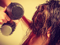Hairdresser drying dark female hair using professional hairdryer Royalty Free Stock Photography