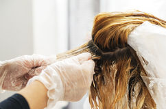 Hairdresser dye  hair of female client. Beauty salon. Hairdresser dye  hair of female client Royalty Free Stock Images