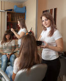 Hairdresser dye  long-haired girl Stock Photography