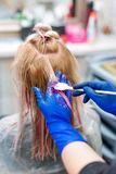 Hairdresser is dying female hair. Hands in glives with brush, coloring in hair salon. Hairdresser is dying female hair. Hands in glives with brush, coloring in royalty free stock images