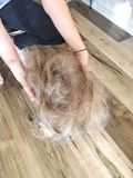 Hairdresser holding cut hair on salon floor Royalty Free Stock Image
