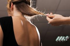 Hairdresser holding hair of a model with split ends royalty free stock images