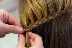 Hairdresser makes braids Stock Images